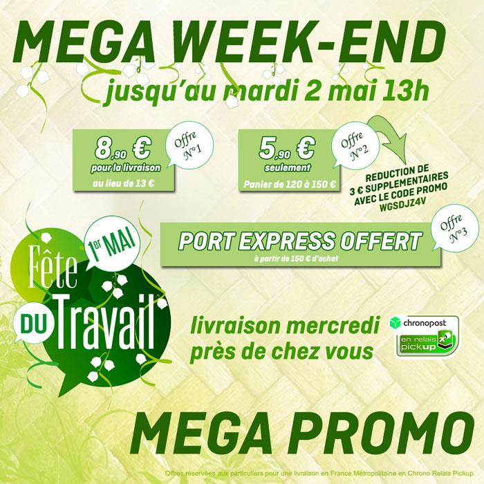 Promo-Mega-WE.jpg